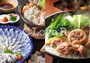 国産ふぐ料理セット(2~3人前)+博多華味鳥水たきセット